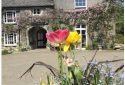 Colcharton Farm, Bed and Breakfast Tavistock