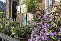 Kelston Guest House, Bed and Breakfast Weymouth
